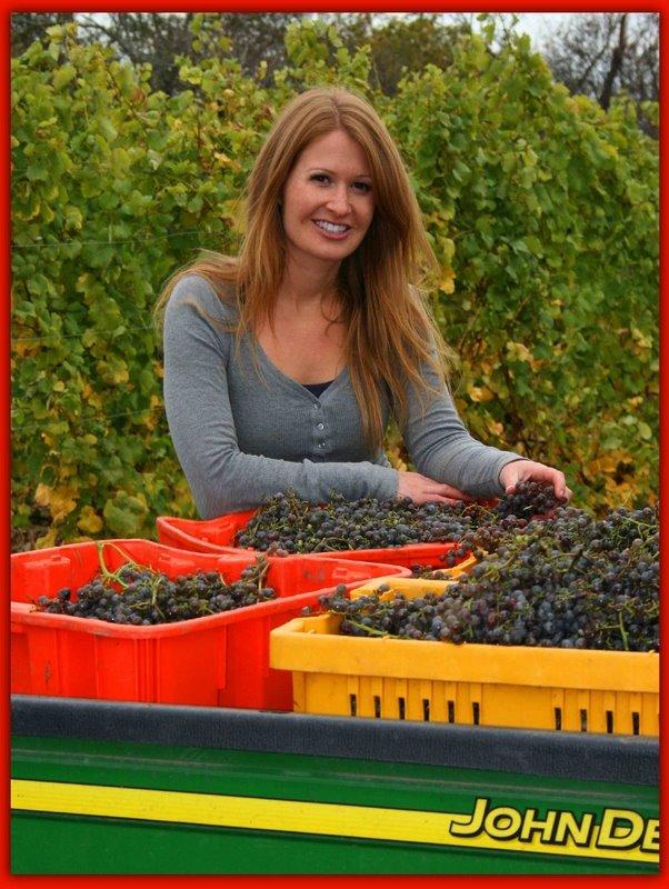 Lauren Horlock with bushels of freshly picked grapes